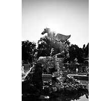 Pegasus Photographic Print