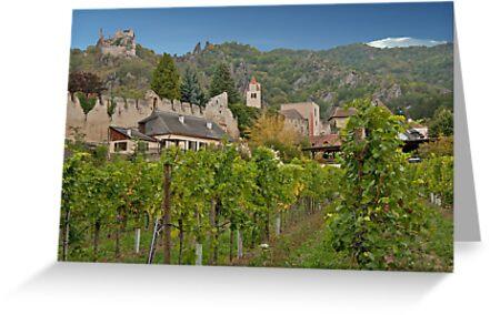 Durnstein Vineyard by phil decocco