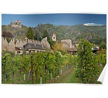 Durnstein Vineyard Poster