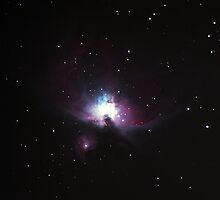 Orion Nebula by David Misko