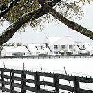 "Southfork Ranch Home of ""Dallas"" - TV Mini-Series by Dyle Warren"