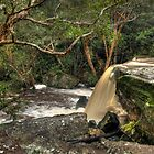 Somersby Falls in flood by Chris Allen