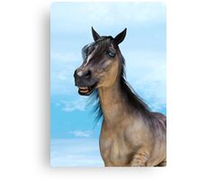 Smiling Horse Canvas Print