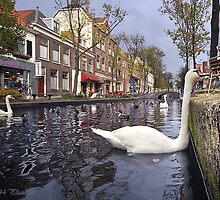 ..old Delft in Holland...4..from the Swan's point of view by John44