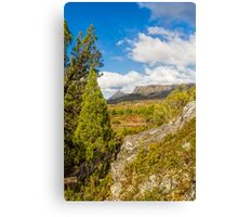 Snake Hill, Cradle Mountain, Tasmania, Australia #3 Canvas Print