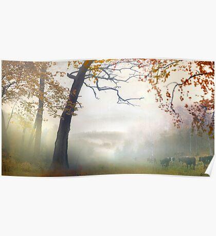 Morning Fog 2 Poster