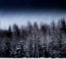 Winter Wonderland by Elena J