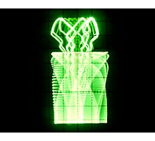 Oscilloscope Flowers in Vase Photographic Print