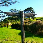 Hobbiton and Green Dragon Signpost - Hobbiton, New Zealand by Nicola Barnard