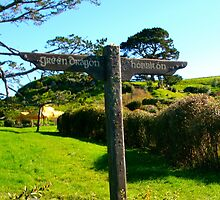 Hobbiton and Green Dragon Signpost - Hobbiton, New Zealand by Nicola Barnard
