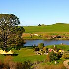 View from Bag End - Hobbiton, New Zealand by Nicola Barnard