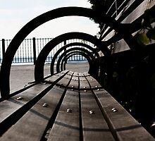 Brooklyn Park Bench by Eric Kunz