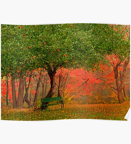 Under The Apple Tree Poster
