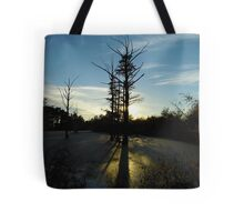 Backlit Cypress Tote Bag