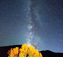 Milky Way October Sky by Bo Insogna