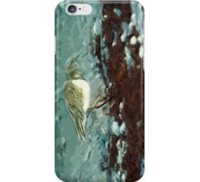Shorebird Ruddy Turnstone Abstract Impressionist iPhone Case/Skin