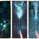 Potter Series  by Ajeyes