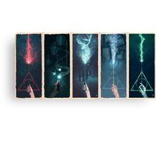 Potter Series  Canvas Print