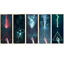Potter Series  Photographic Print