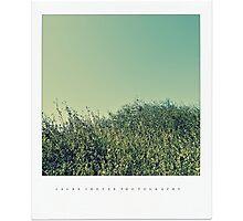 PANTONE Photographic Print