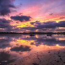Purple Bembridge by manateevoyager