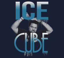 Ice Cube by FreeYourArt