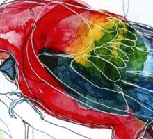 Birds in INK ~ Red Macaw Sticker