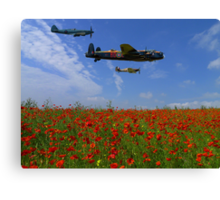 BBMF over the Poppy Field Canvas Print