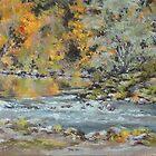 Fall on the River  by Karen Ilari