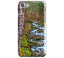 Cascades iPhone Case/Skin