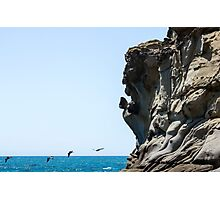 Tafoni Profile and Four Pelicans Photographic Print