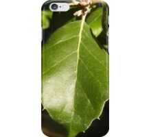 Leaf Up Close iPhone Case/Skin