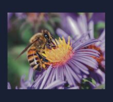 Honey Bee On Purple Flower Kids Tee