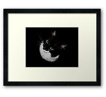 Tux Kitty Framed Print
