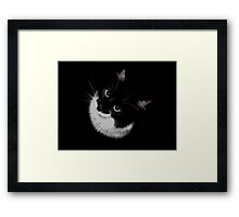 Tux Kitty Framed Print