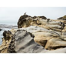 Tafoni Scape and Geode with Seagull Photographic Print