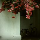 Bicycle without a wheel by iamelmana