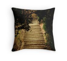 Steps- Zambia  Throw Pillow