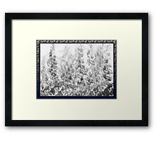 ©DA Ice Fire IA Monochromatic B Framed Print