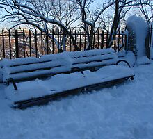Snow Bench by PazsNYMinute