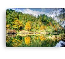 Autumn on the Tolt River Canvas Print