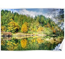 Autumn on the Tolt River Poster