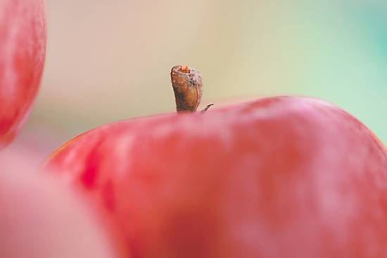Apples by Alex Volkoff