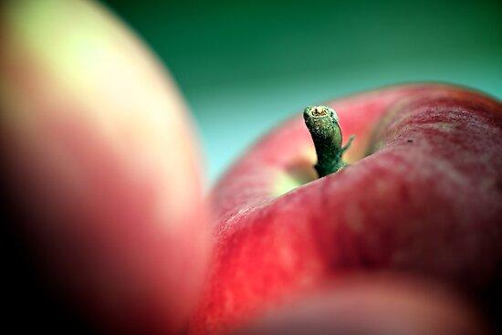 Apple by Alex Volkoff