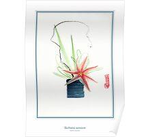 Ikebana 04 Poster