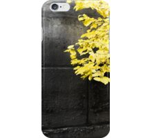 Yellow leaves on an ancient brick wall in Paris iPhone Case/Skin