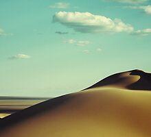 Gobi desert - Mongolia by efrengonza