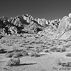 The Alabama Hills by philw