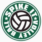 Spike_It_Volleyball by auraclover