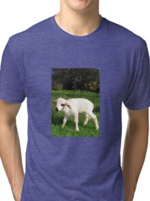 A Newborn Lamb Finding Its Feet Tri-blend T-Shirt